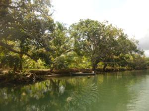 Wat een prachtige tocht maakten we met de rubberboot op de rivier.