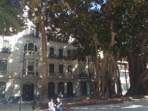 Schitterend plein met enorme ficusbomen in Cartagena.